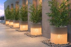 Add illumination to your backyard or with this Atla White Illuminated Planter by Zuo Modern. It will create a bold, dynamic design in your space and add the atmosphere of drama to the landscape design. The planter is now on sale at Modern Landscape Design, Landscape Plans, Modern Landscaping, Backyard Landscaping, Landscape Architecture, Landscaping Ideas, Architecture Design, Backyard Lighting, Pathway Lighting