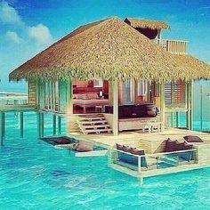 Honeymoon?!!