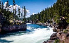 Download wallpapers Yellowstone River, Mountain river, stones, forest, summer, Missouri, USA