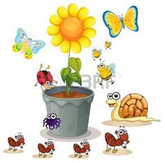 ilustraci�n de la maceta y varios insectos en blanco photo
