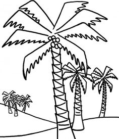 Diagram of Date Palm Tree. The Date Palm, specifically the ...