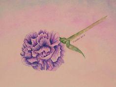 Lavender Carnation by cindyzlogic, via Flickr