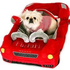 $300 (new) Or they might get this for their birthday Furrari Red Designer Luxury Car Dog Bed