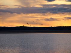 luonto kuvat ja kortit:  auringon lasku on iltahämärtä iltasin aikasin kel...