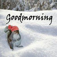 frasi buongiorno con la neve