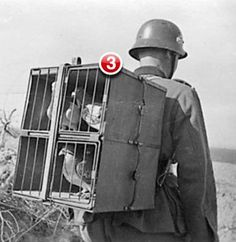 You have 3 unread messages... a little military history humor :D