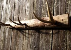 Rustic Deer Antler Coat Rack for Him, Wall Decor,  Rustic Home Decor, Handmade MenusRusticDecor on Etsy, $69.50