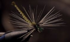 Dragons and Damsels: 10 Great Dry Fly Patterns