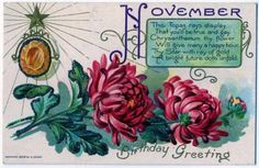 November happy birthday greetings postcard 1908 topaz chrysanthemum antique Nash