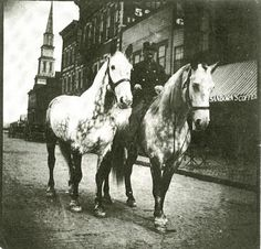 "Police officer or firefighter astride a large horse on South Park Street while he holds the reins of another horse. The photo, circa 1895, shows the row of businesses along the street, west to east. The old Presbyterian Church, easily one of the city's tallest buildings, sits at the end of the street. A grocery, probably Angle's, sits in the right foreground, its striped awning advertising ""Sanborn's Coffee."""