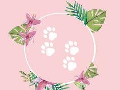 Instagram Popular, Instagram Blog, Instagram Story, Google Drive, Insta Icon, Pets, Highlights, Dog, Animals