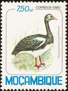 Spur-winged Goose stamps - mainly images - gallery format