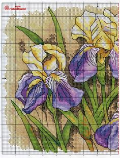Cross stitch - flowers: Iris (chart - part 1)