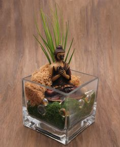 Glass Cube Buddha Terrarium features moss, live air plant and a Buddha statue. Bring serenity to your desk.