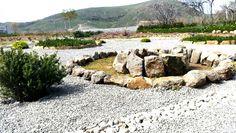 Rock Garden Herbal Garden Cooming Soon Costa Costa Beach Bar Petradi Studios Garden Lemnos Greece