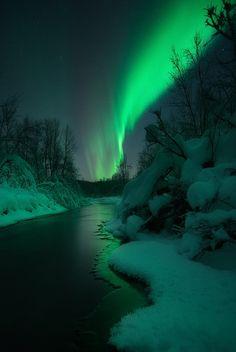 Christmas Lights by Arild Heitmann**