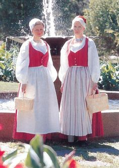 Satakunnan maakuntapuku | Satakuntaliitto Folk Clothing, Historical Clothing, Folk Costume, Costumes, Figure Skating Dresses, Folklore, Traditional Outfits, Nostalgia, The Incredibles