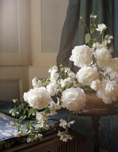 Sumptuous white flowers.