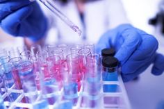 Bio-Rad's equity position in a German pharma company is an asset many investors may not realize. Tissue Engineering, Delivering A Baby, The Motley Fool, Type 1 Diabetes, Biotechnology, Professor, Genetics, Trials, At Home Workouts