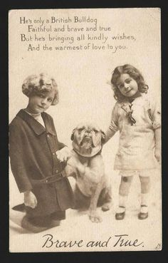 M16 - VINTAGE POSTCARD - BRITISH BULLDOG - BULLY'S PLAYMATES - RAPHAEL TUCK. Pinned by Judi Crowe.