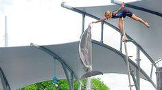 Já imaginou ser um treinador marinho por um dia e participar de um espetáculo com golfinhos e leões marinhos, com você no comando? http://www.weplann.com.br/miami/seaquarium-ingresso-formacao-treinador