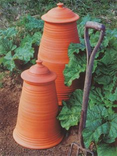 Terra Cotta Rhubarb Forcers.  I don't know what a forcer is but I love growing rhubarb so I am going to have to find out what I have been missing!