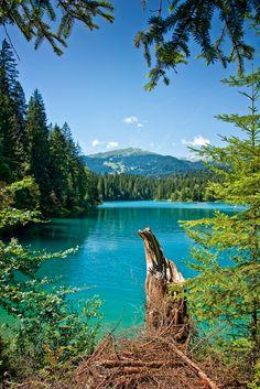 Caumasee- A lake near Flims, in the Grisons, Switzerland http://www.pinterest.com/pin/463870830341550764/ น้ำใสน่าเล่น