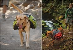 Going Camping! - emt dog - Do you like taking your fury friend along with you on your backcountry adventures? These sleek dog packs by Ruffwear feature an efficient, weight-forward design with plenty of stash pockets allowing your dog to carry hydration bottles, leash, pickup bags and other essential hiking gear. The saddlebags also feature a reflective trim for visibility in low-light conditions.