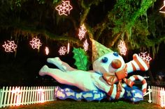 """""""Jingle, jangle, jingle Here comes Mr. Bingle With another message from Kris Kringle Time to launch your Christmas season"""" Stop by Celebration of the Oaks to see Mr. Bingle, a New Orleans holiday icon."""
