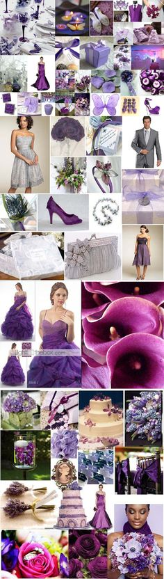More Purple Images