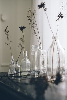 // vintage glass + flowers / Nordic Light by Babes in Boyland Nordic Lights, Deco Floral, Arte Floral, Bottles And Jars, Glass Bottles, Apothecary Bottles, Wabi Sabi, Estilo Tropical, Disney Pop