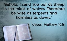 """What is the Real Meaning of the Verse, """"Wise as a Serpent and Harmless as a Dove?"""" Pray that God's wisdom will increase and abound in your life. A very good read on how Christians are to handle non-believers. Holy Mary, Bible Quotes, Bible Verses, Be Wise As Serpents, Believe, The Good Shepherd, I Sent You, Powerful Words, Christ"""