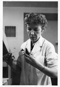 Mary Alice McWhinnie (1922–1980) was a world-renowned expert on krill who eventually became the first woman to serve as chief scientist at an Antarctic research station.