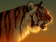 Evening Glow by Pixxus on DeviantArt Tiger Drawing, Tiger Painting, Tiger Art, Animal Sketches, Animal Drawings, Cool Drawings, Big Cats Art, Cat Art, Tiger Poster
