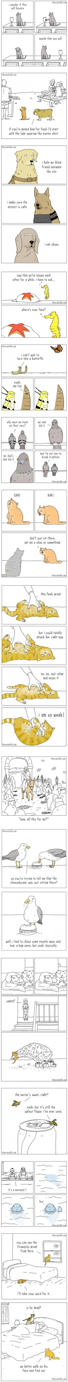15 comics from an artist who understands animals perfectly (By Jimmy)