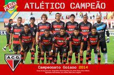 CLUBE DO TORCEDOR AUCON: CAMPEONATO GOIANO 2014