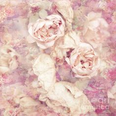 Vintage Roses by #VIAINA - Textured #FineArtPrint on various media