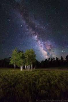 Galactic Aspens by Royce's NightScapes on 500px