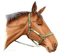 HorseLinda2 copy.jpg (1059×973)