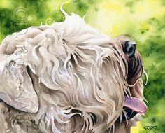 WHEATEN TERRIER Dog Art Print Signed by Artist DJ Rogers
