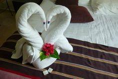 Valentine's Towel Creations Riviera Maya, Towel Origami, Towel Animals, How To Fold Towels, Towel Cakes, Origami Animals, Decorative Towels, Napkin Folding, Animal Crafts