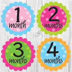 Monthly Baby Milestone Stickers Baby Girl Baby Shower Gift