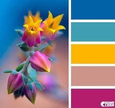 Fabulous Color Combines several beautiful colors: contrasting shades of yellow, orange,Colorful Palette CHAMELEON. Colour Pallette, Colour Schemes, Color Patterns, Color Combos, Taupe Colour, Paint Combinations, Spring Color Palette, Modern Color Palette, Bright Color Palettes