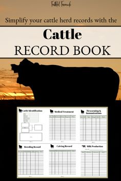 Simplify your cattle herd records with the Cattle Record Book! Cattle Barn, Show Cattle, Beef Cattle, Cattle Ranch, Cattle Dogs, Livestock Farming, Goat Farming, Dexter Cattle, Mini Cows