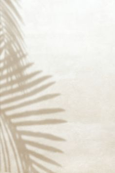 Aesthetic Backgrounds, Aesthetic Wallpapers, Leaf Art, Backgrounds Wallpapers, Light And Shadow, Leaf Design, Beige Aesthetic, Textures Patterns, Palm