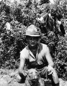 April New Zealander soldier W J Batt with a regimental mascot at Walker's Ridge during the Gallipoli campaign in Turkey dog australia or anzac Anzac Soldiers, Gallipoli Campaign, Ww1 History, Anzac Cove, Melbourne Street, Military Working Dogs, Anzac Day, Lest We Forget, World War One
