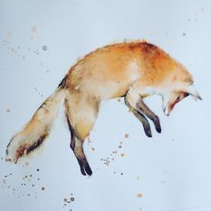 """""""#watercolor #fox #woodland #instagood #nature #instaart #painting #illustration #katrinapete #art #instapainting #etsyfinds #instaart"""" Photo taken by @thedailywatercolor on Instagram, pinned via the InstaPin iOS App! http://www.instapinapp.com (09/06/2015)"""