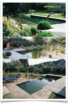 Natural Swimming Pools. I know exactly what I am going to start saving for. <3. Brian and I could totally rock this.