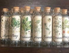 Herb vials ~ set of witch's herbs ~ Sacred herbs ~ Ritual herbs ~ Herbal apothecary, 25 ml. vials with herbs or just labeled vials. Herbal Witch, Witch Herbs, Cork, Rosemary Herb, Strawberry Leaves, Honeysuckle Flower, Chicory Root, Peppermint Leaves, Turmeric Root
