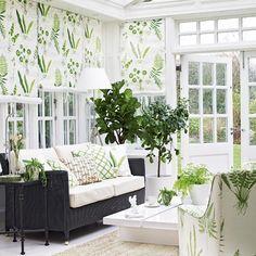 Conservatories | Conservatory decorating ideas | PHOTO GALLERY | Housetohome.co.ukI like the botanical prints.